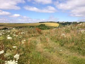 between arundel and amberley